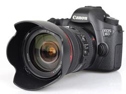 Picture of Canon E05 6D