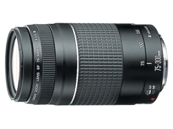 Picture of Canon 75-300mm Lens